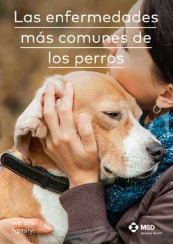 DOG DISEASES COVER MX