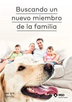 FINDING DOG COVER MX