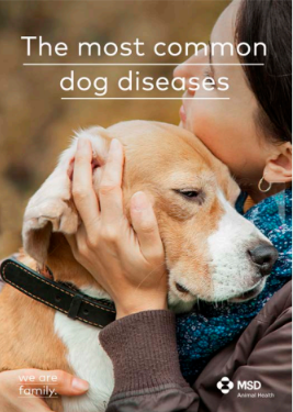 THE_MOST_COMMOM_DOG_DISEASES