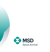 footer-msd